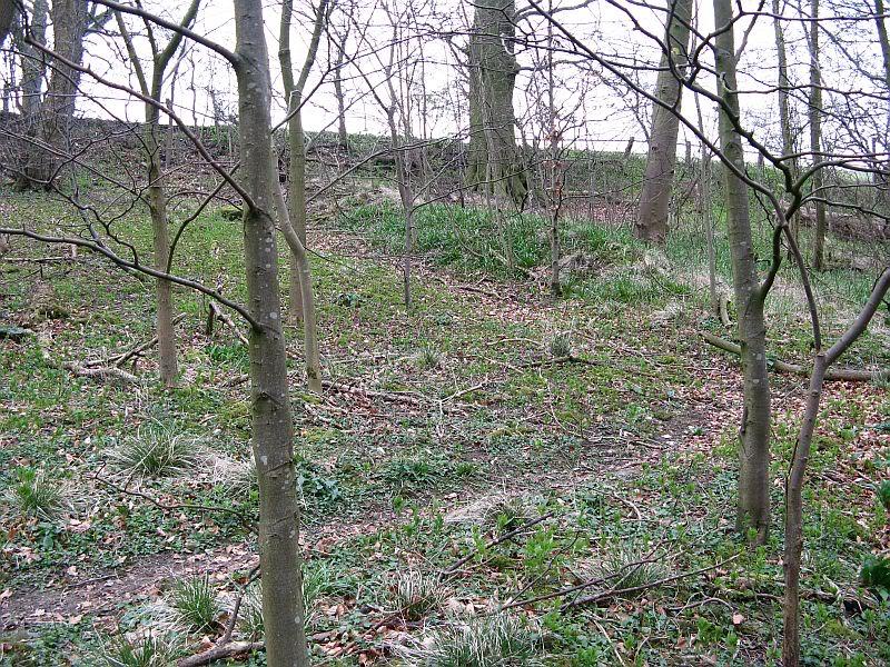 Possible Roman Site in Horton Lancashire 11
