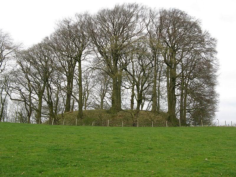 Possible Roman Site in Horton Lancashire 16
