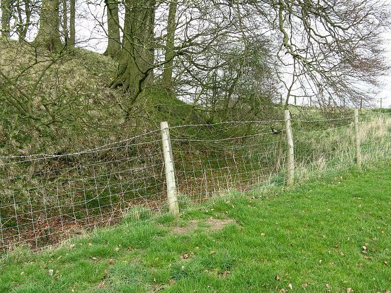 Possible Roman Site in Horton Lancashire 18