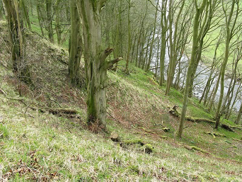 Possible Roman Site in Horton Lancashire 19