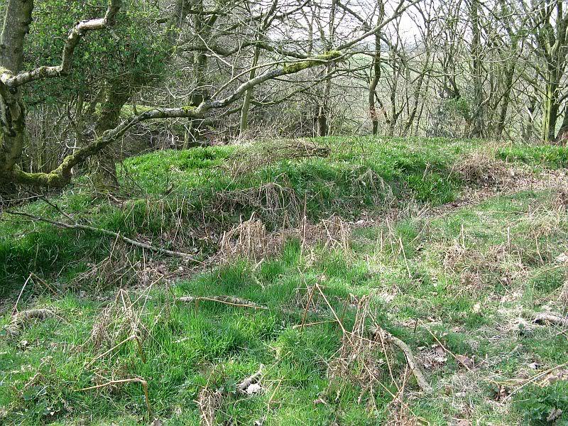 Possible Roman Site in Horton Lancashire 25