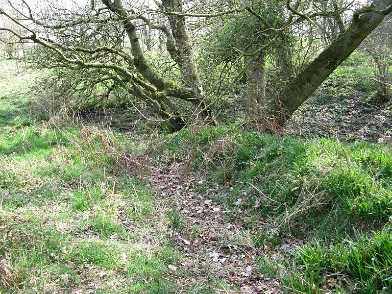 Possible Roman Site in Horton Lancashire 26