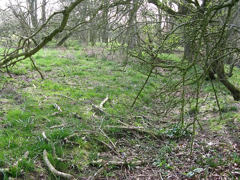 Possible Roman Site in Horton Lancashire 28