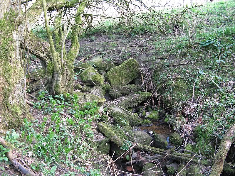 Possible Roman Site in Horton Lancashire 31
