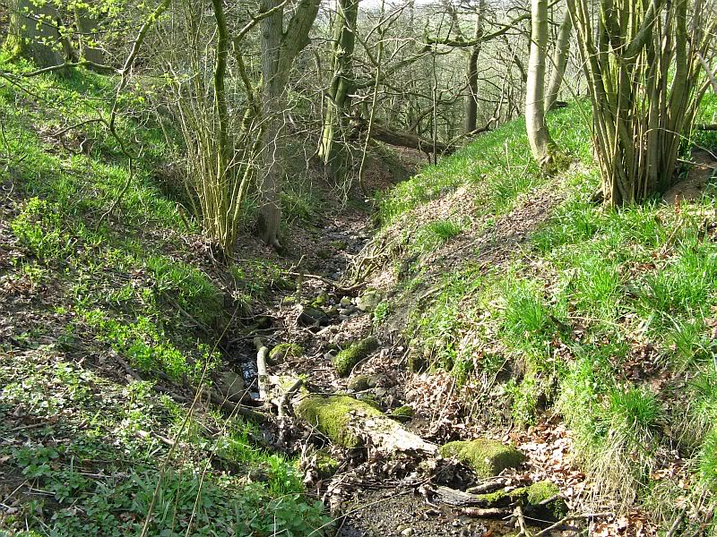 Possible Roman Site in Horton Lancashire 32