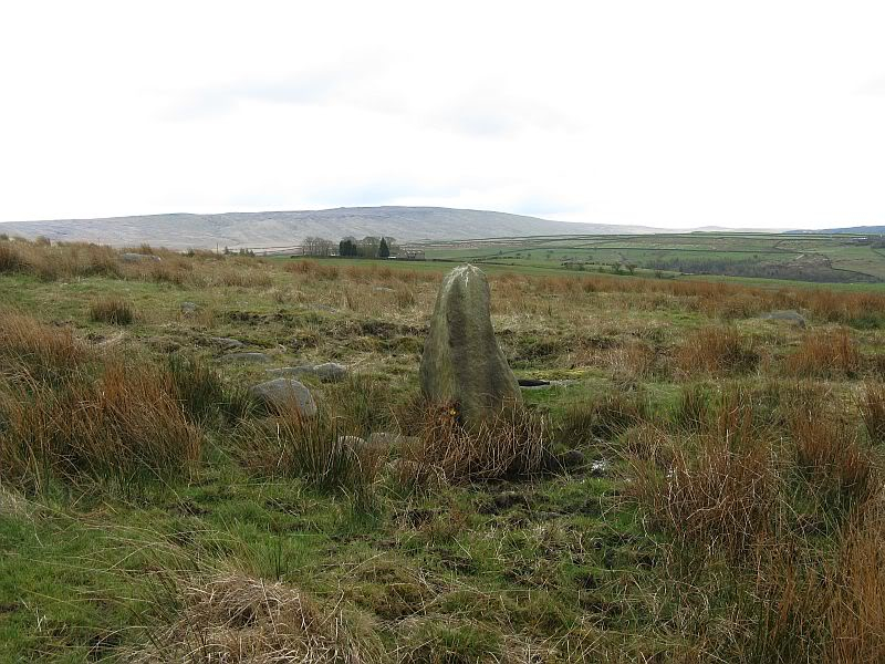 Standing stone North of Ratten Clough IMG_2523