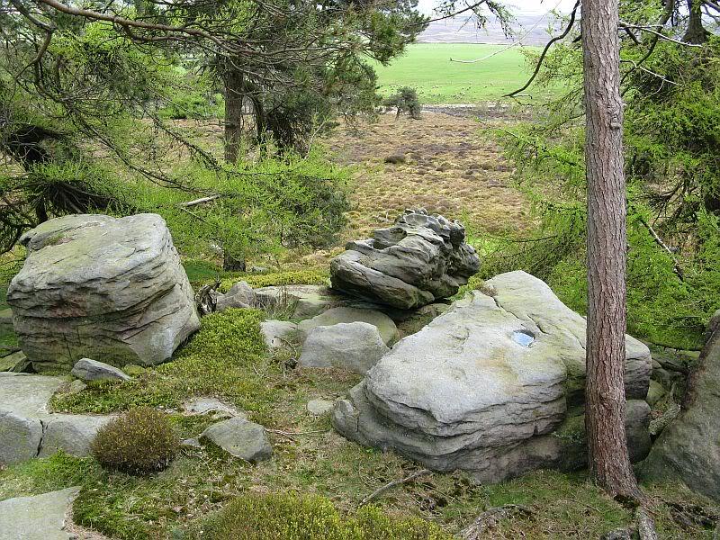 Strange Rock sculptures IMG_2966