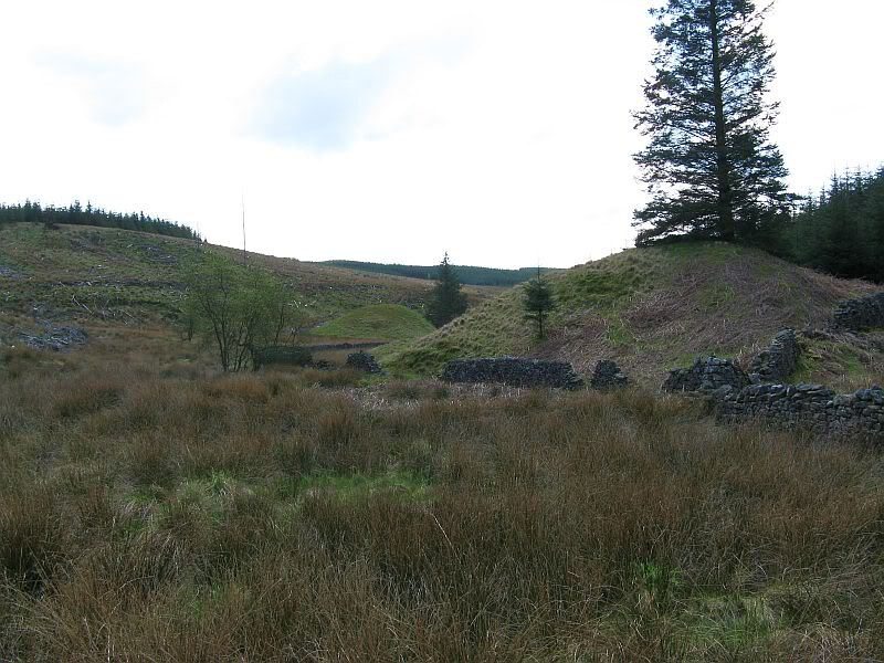 Brown Hill Barrows N1