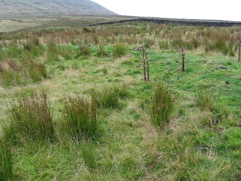 PENDLE HILL, STONEY BANK RINGWORK, SD 806 428 002d