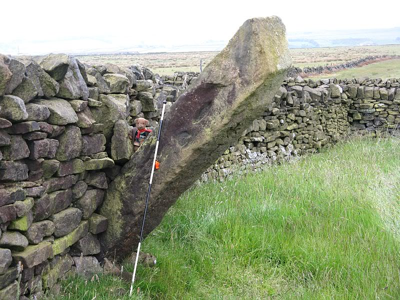 POLE STOOP STANDING STONE or HANGING STONE 13