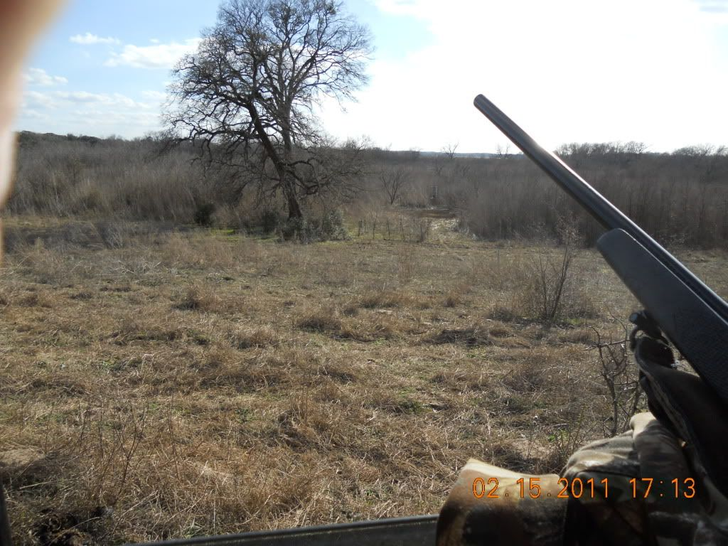 FIRST HOG HUNT OF THE YEAR 009-3