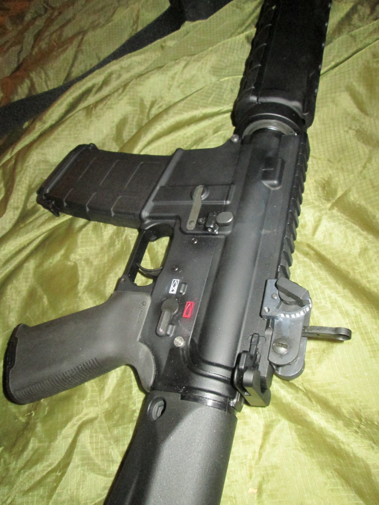 New Forum Member and victim of BRS (Black Rifle Syndrome) IMG_0026