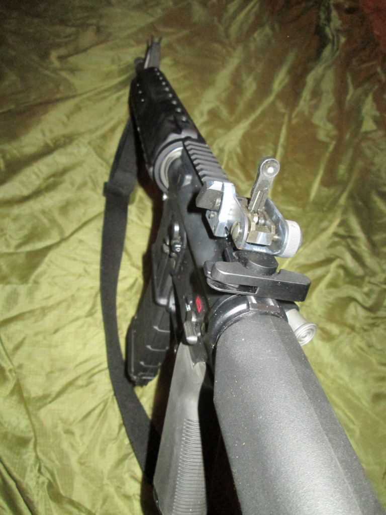 New Forum Member and victim of BRS (Black Rifle Syndrome) IMG_0029