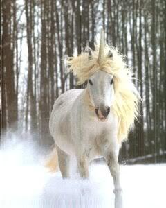 Unicornios y Pegasos. Unicornio11