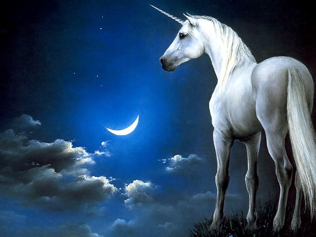 Unicornios y Pegasos. Unicornio119