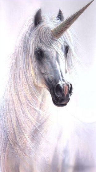 Unicornios y Pegasos. Unicornio24