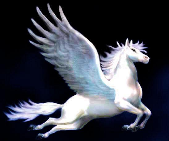 Unicornios y Pegasos. Unicornio97