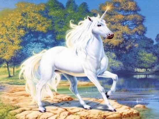 Unicornios y Pegasos. Unicornio98