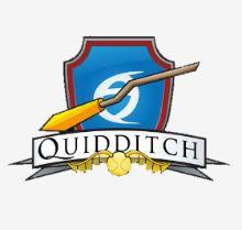 Equipos de Quidditch Quidditch