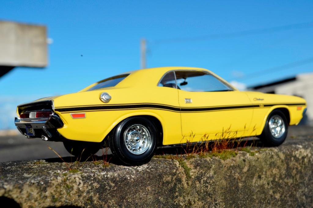 Dodge Challenger 1970 _CSC6520_zpswvx8sttc