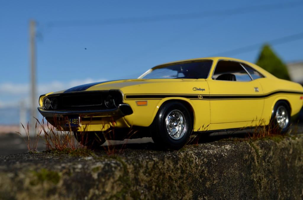 Dodge Challenger 1970 _DSC6504_zpsaj5k8onl