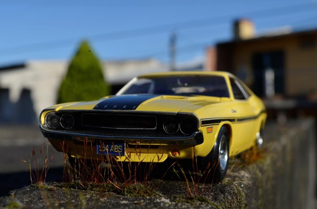 Dodge Challenger 1970 _DSC6505_zpszsg4kbh7