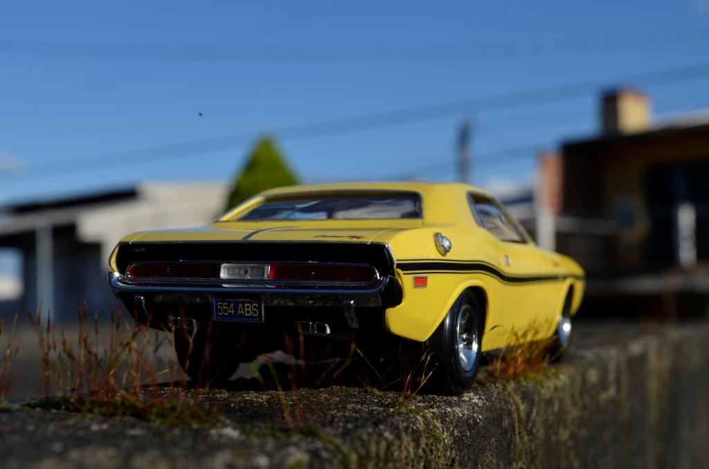 Dodge Challenger 1970 _DSC6506_zpsj8jkwm6s
