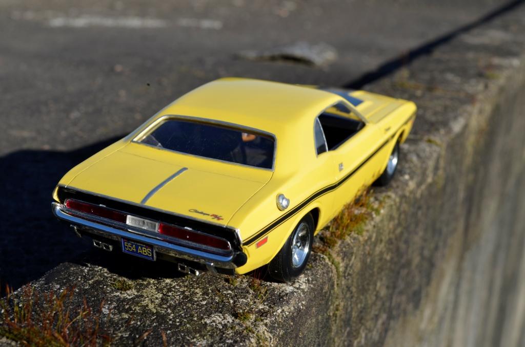 Dodge Challenger 1970 _DSC6507_zps0agl2t2z