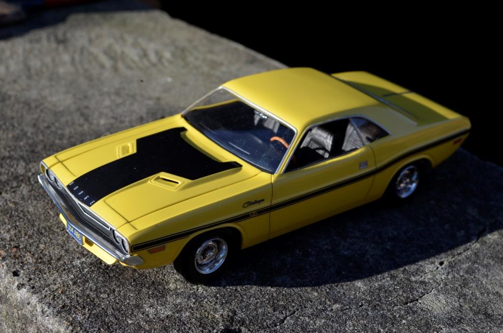 Dodge Challenger 1970 _DSC6509_zps9m0n9tqd