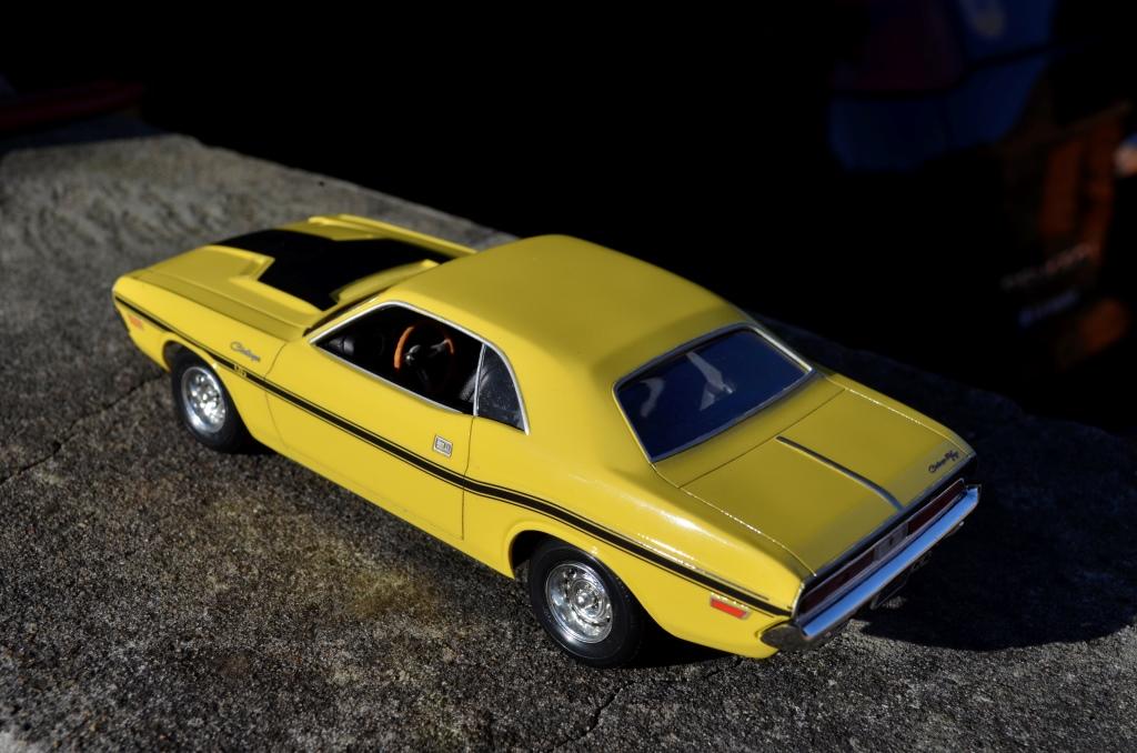 Dodge Challenger 1970 _DSC6511_zps4ioh6qhg
