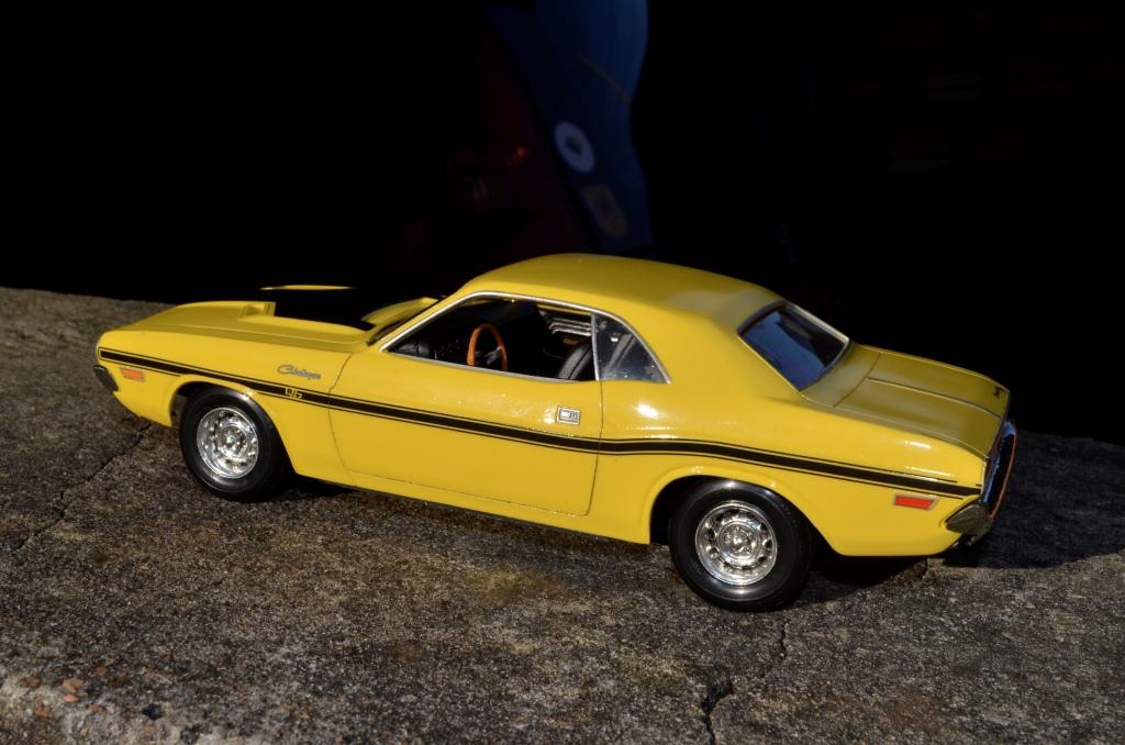 Dodge Challenger 1970 _DSC6512_zpsplct7aby