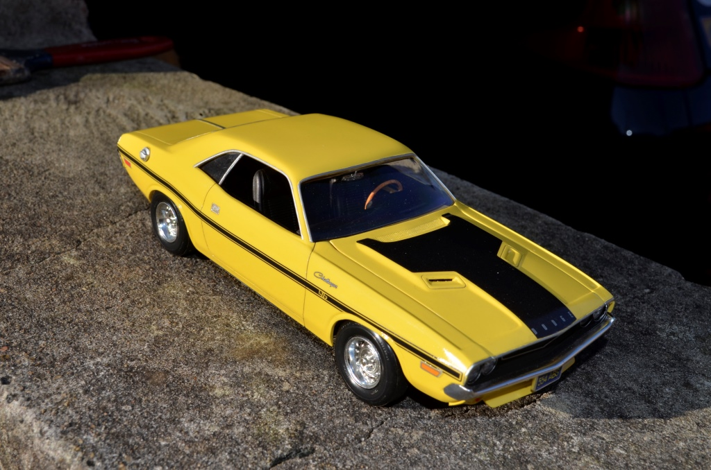 Dodge Challenger 1970 _DSC6513_zpsnxcfdljb
