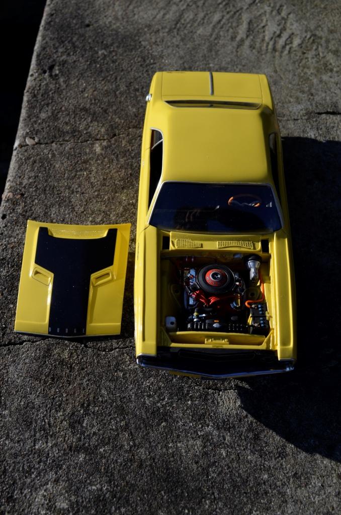 Dodge Challenger 1970 _DSC6515_zps3dli4qp2