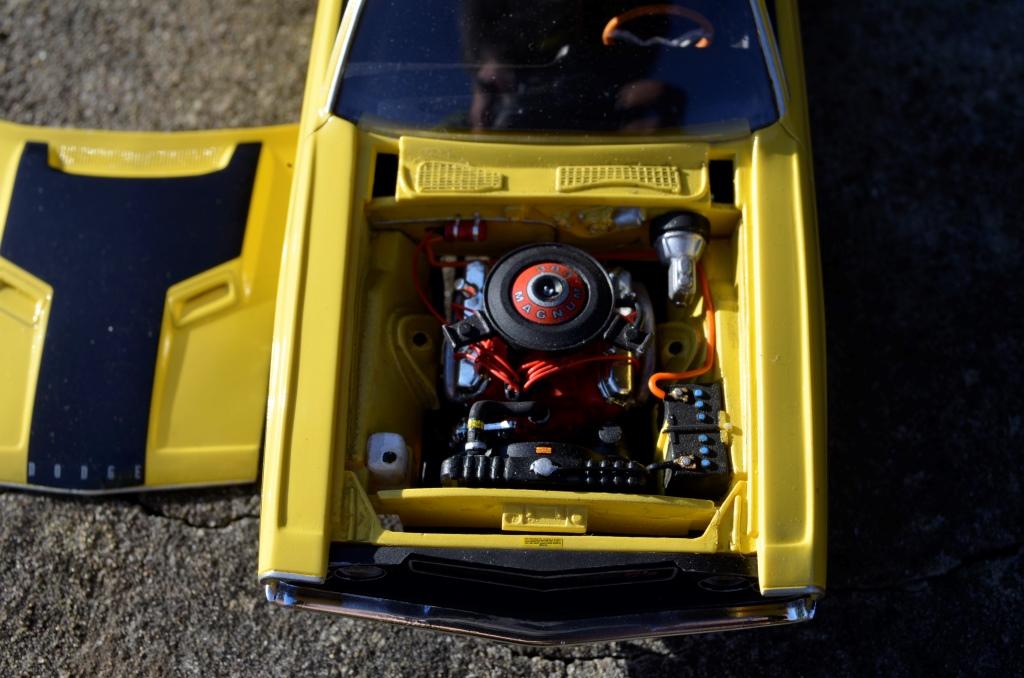 Dodge Challenger 1970 _DSC6516_zpssaqjzoas