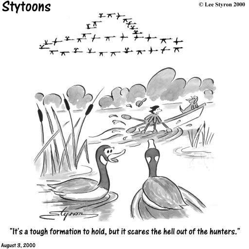 Humour - Page 3 Ufo_birds