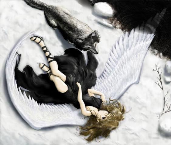 Angelically Devilish Fallen-angel-anime-wolf-31000