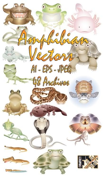 vectors very necessary for designers AmphibianVectors-Full