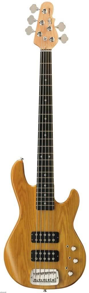 guitars&bass guitars GLtribute5-string