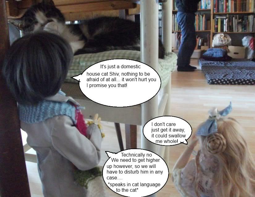 The Traveler Episode 1 - Land of the Giant Cat (B&G Grenville + Luts KDF Ani)  DSCF2189