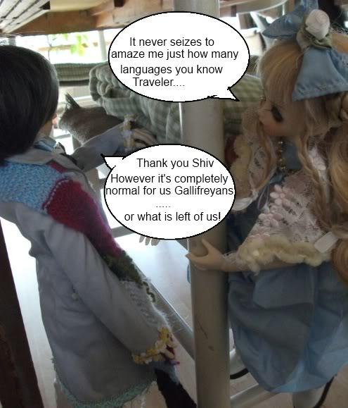 The Traveler Episode 1 - Land of the Giant Cat (B&G Grenville + Luts KDF Ani)  DSCF2195