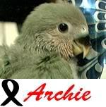 Listado de nombres Archie