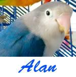 Listado de nombres Alan