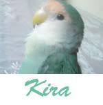 Listado de nombres Kira4