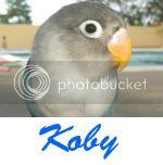Listado de nombres Koby