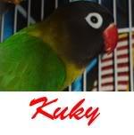 Listado de nombres Kuky