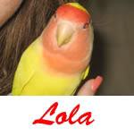 Listado de nombres Lola2