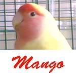 Listado de nombres Mango