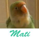 Listado de nombres Mati