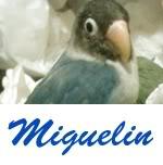 Listado de nombres Miguelin