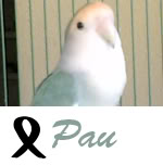 Listado de nombres Pau